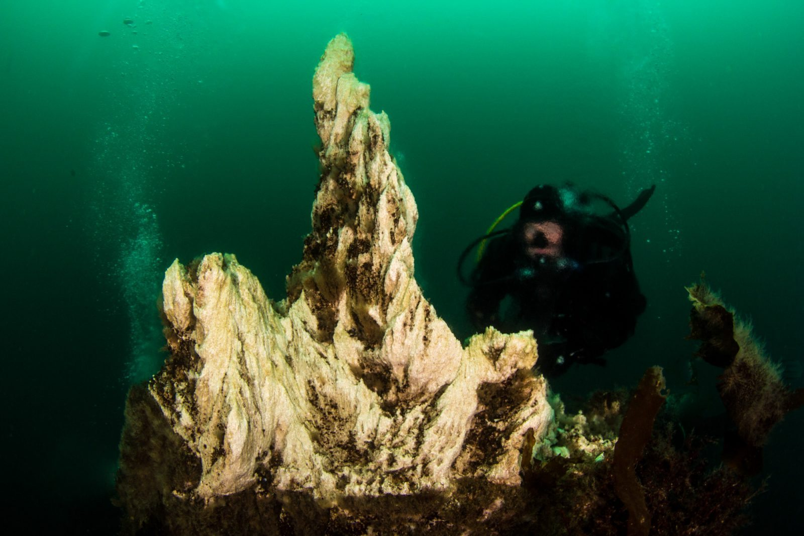 Diving in Strýtan North of Iceland
